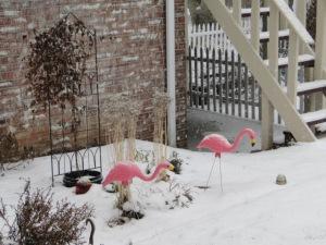 Guarding the snow