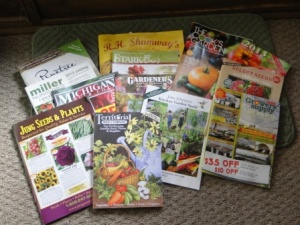 catalogs galore