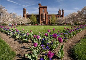 "The Smithsonian Institution was created by Congress in 1846 as ""an establishment for the increase and diffusion of knowledge."""