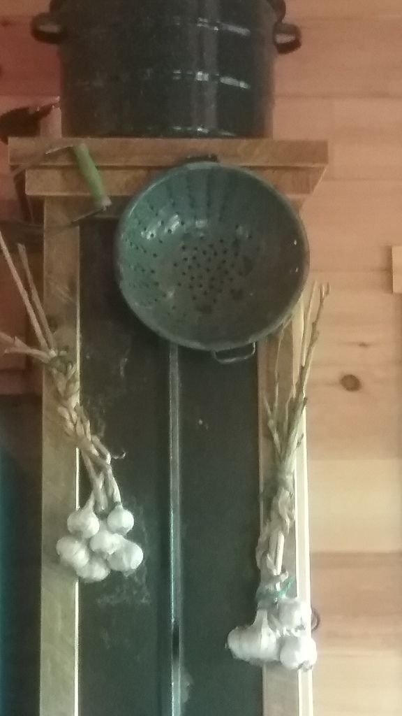 GarlicBraids